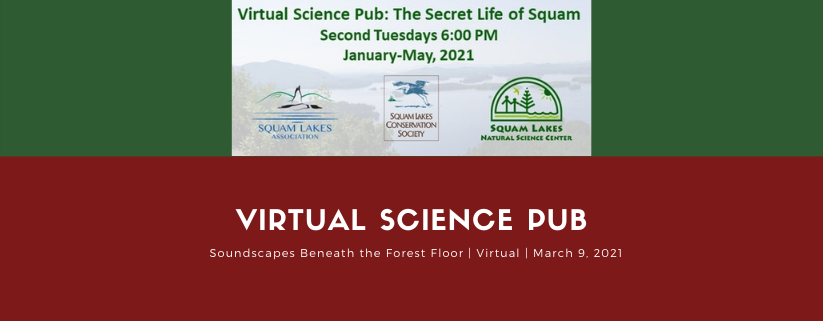 Science Pub: Soundscapes Beneath the Forest Floor- Soil, Water, & Rock Interactions